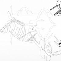 Cervo trofeo - disegno vettoriale scaricabile gratuitamente