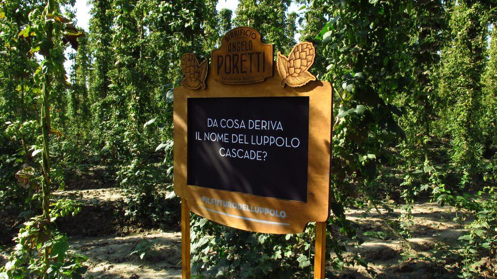 Poretti Beer panneau en bois peint